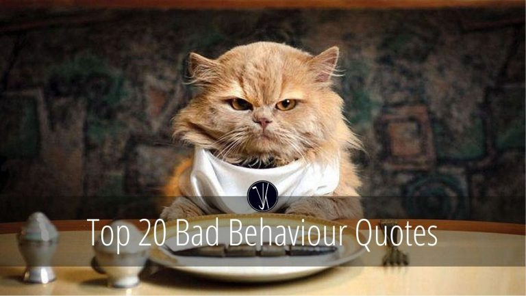 Bad Behaviour Quotes
