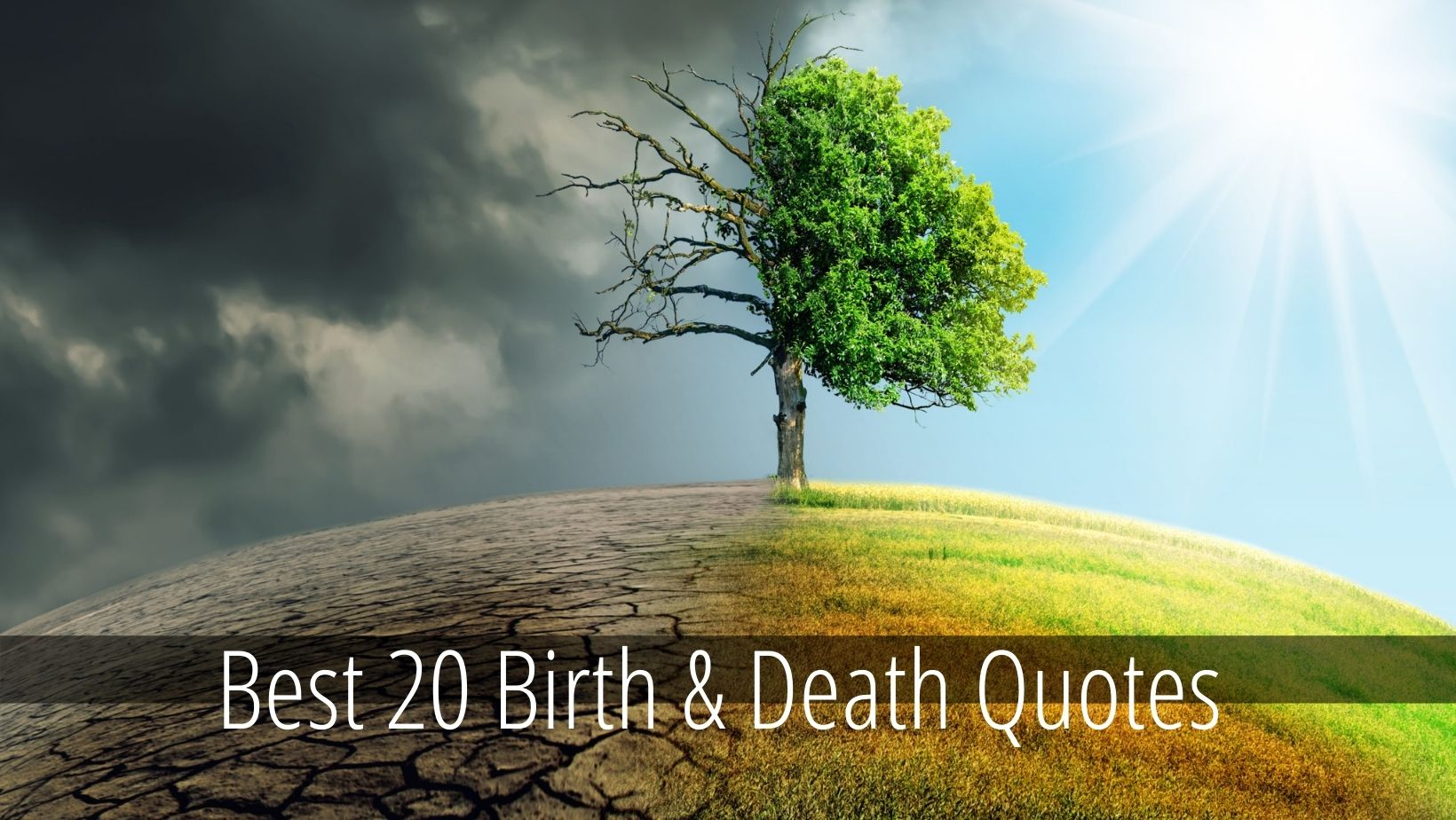 Birth and Death Quotes
